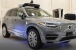 Uber Volvo'dan 24 bin sürücüsüz araç alacak