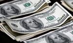 Dolar sakin seyrediyor