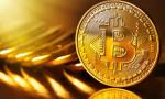 Silk & Cashmere'in Bitcoin planı