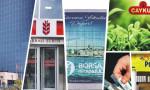 11 soruda Türkiye Varlık Fonu