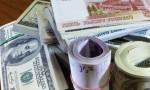 Maliye Bakanlığı rekor dolar alımı yapacak
