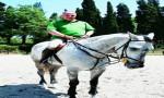 Bülent Bora: Atlar lider yetiştirir