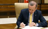 Cumhurbaşkanı Erdoğan'dan 19 kanuna onay