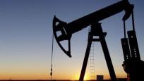 Petrol OPEC toplantısı öncesi yön arayışında