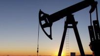Petrol devlerinin kârları azaldı