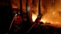 Portekiz'de orman yangını: 27 ölü
