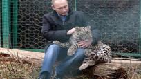 İşte Putin'in leoparı
