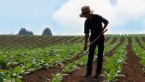 Genç çiftçilere 30 Bin TL hibe