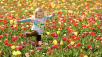 Ailecek yapabileceğiniz basit ve eğlenceli bahar aktiviteleri