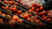 Türkiye'den Rusya'ya domates için yeni teklif