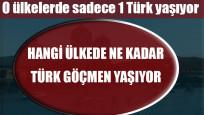 Hangi ülkede ne kadar Türk göçmen yaşıyor