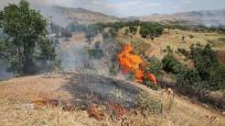 Hatay'da teröristlerle sıcak temas! Ormanı ateşe verip kaçtılar