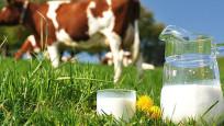 Çiğ süt referans fiyatı belli oldu