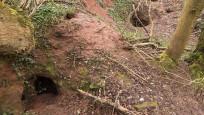 Tavşan deliğinde müthiş keşif