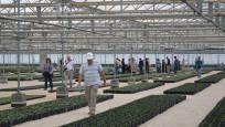 Kur'an Kerim botanik bahçesi kuruldu