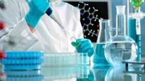 Pankreas kanserine karşı etken madde geliştirildi