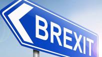 Brexit oylaması 21 Ocak'tan önce yapılacak
