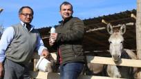 Eşek sütü gırtlak kanserini iyileştiriyor mu?