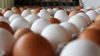 Kodsuz yumurta satılmayacak