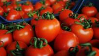 Rusya'dan 5 şirkete daha domates izni