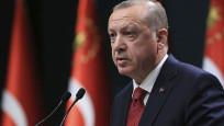 Cumhurbaşkanı Erdoğan, 55 ilde miting yapacak