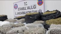 Kağıthane'de 40 kilo bonzai ele geçirildi