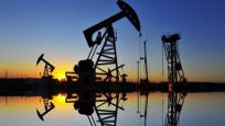 Euro Bölgesi'nde yükselen petrol fiyatları endişesi