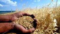 Tarımsal projelere 40 milyon lira Ar-Ge desteği