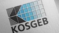 KOSGEB'in yapısında yeni düzenleme