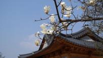 Asya'da ziyaret edilebilecek en iyi yerler