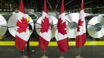 Fitch Kanada'nın kredi notunu teyit etti