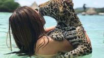 Jaguarlarla yüzüp, fotoğraf 40 euro