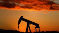 Petrol ithalatı Haziran'da azaldı