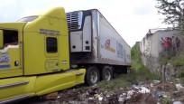 100 ceset bir konteynerde tutuluyor!