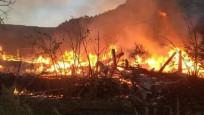 Köyü alevler sardı, 9 ev ve bir ahır kül oldu