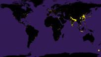 NASA yayınladı, haritadaki sarı noktalara dikkat!