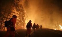 Kaliforniya orman yangınlarında mülk kaybı 1 milyar doları aştı