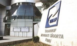 200 şirket TMSF'ye devredildi