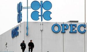 Petrol, OPEC toplantısı öncesi yükseldi