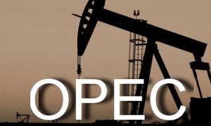 OPEC'ten petrol açıklaması