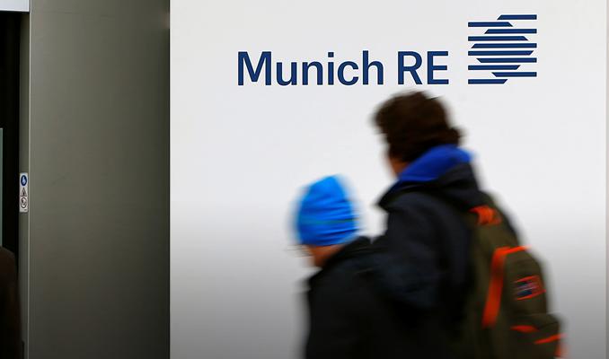 Munich Re'den Çin'de güneş enerjisi ortaklığı