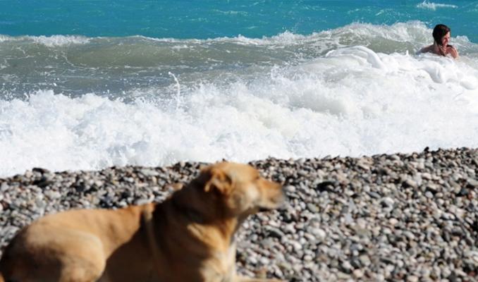Şubat ayında Antalya'da denize girdiler