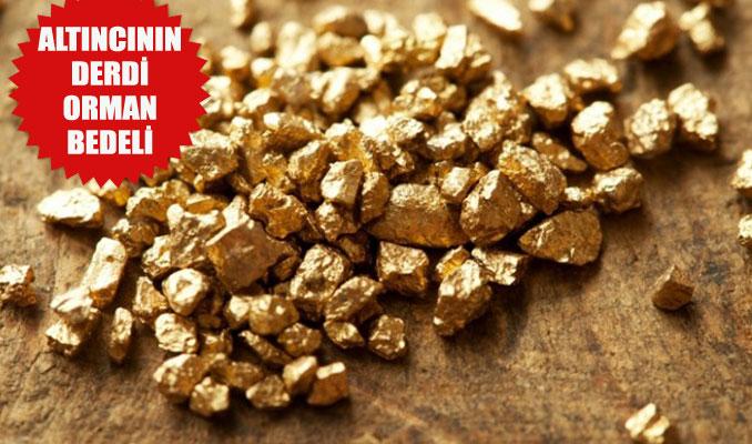 250 milyar dolarlık altın var fakat...