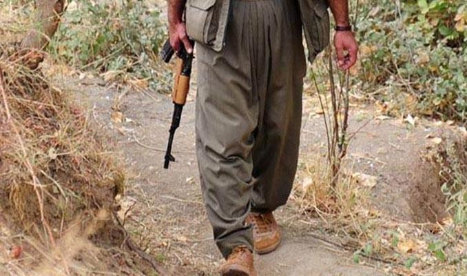 Bingöl'de 3 terörist öldürüldü