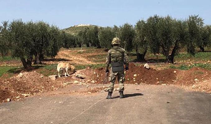 YPG'li teröristler nereye kaçtı