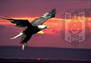 Beşiktaş'a yeni sponsor