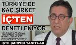 Türkiye'de kaç şirket 'iç'ten denetleniyor