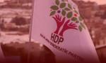 HDP'li vekile 16 yıl hapis cezası