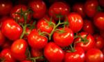 Rusya, 20 ton domatesi Türkiye'ye iade etti