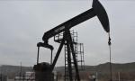 Küresel petrol arzı Şubat'ta azaldı